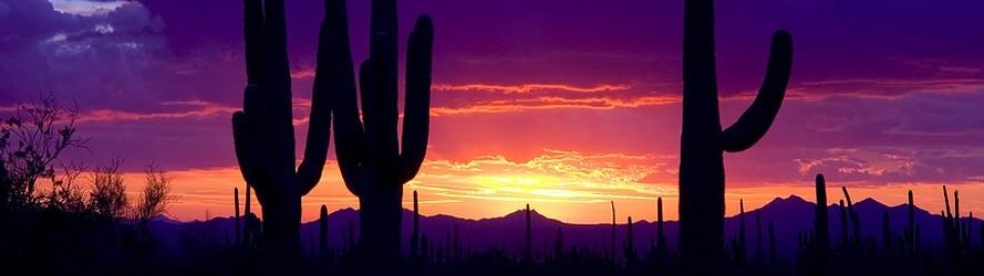 Desert Sunset (2)
